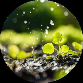 Minimitzem el consum de l'aigua